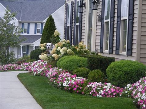 Front Garden Planting Ideas Best 25 Foundation Planting Ideas On Pinterest Front Flower Flower Bushes For Front Of House