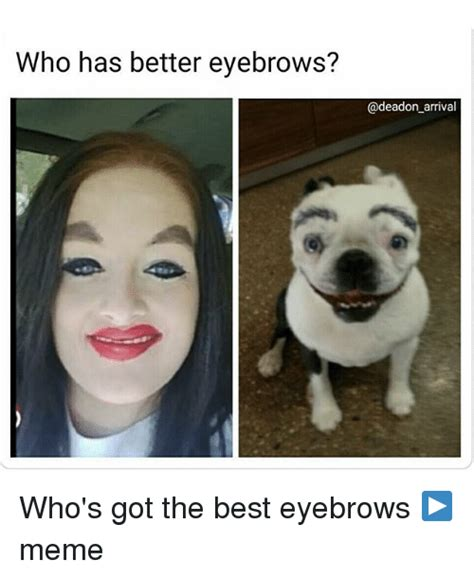 who has better eyebrows arrival who s got the best