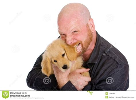 biting a s ear bald biting the ear of a puppy stock photo image 19982908