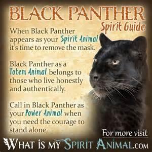 Jaguar Symbolism 25 Best Ideas About Black Power Symbol On