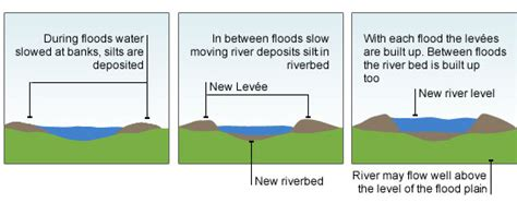 river cross section definition bbc standard grade bitesize geography processes