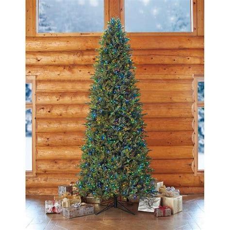 nordmann fir christmas tree home depot 25 unique 12 ft tree ideas on 12 foot tree 7ft tree