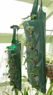 diy hanging grow bags for your plants popsugar home