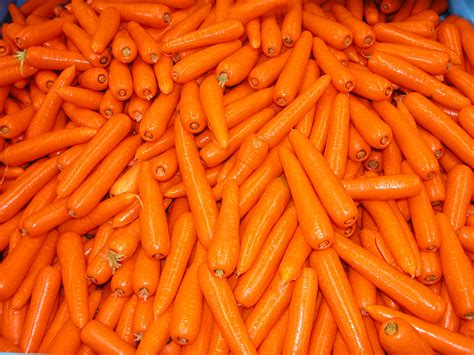 pictures of carrots carrot exports from western australia agriculture and food