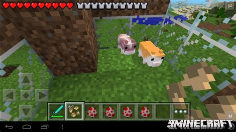 mod in minecraft pocket edition hamsterrific mod for mcpe 9minecraft net