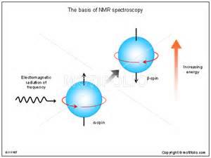 Proton Nmr Basics Nmr Images The Basis Of Nmr Spectroscopy Keywords The