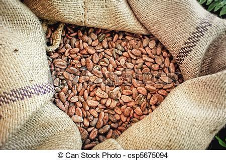 Sac Jute Cacao by Photo De Cacao Haricots Sac Fin Haut Jute Sac