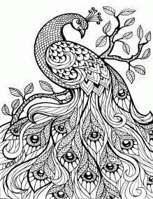 detailed coloring pages for adults detailed animal coloring pages for adults coloring home