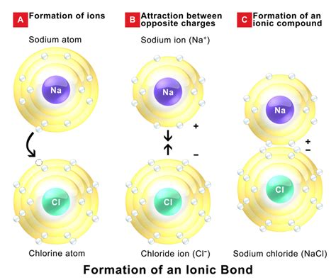 Difference Between Ionic And difference between ionic covalent and metallic bonds