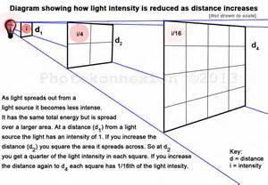 intensity of light light intensity estimating the light you need
