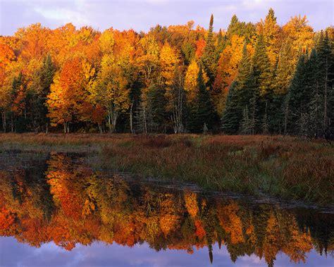fall colors in virginia fall festivals in md va and washington d c ezstorage