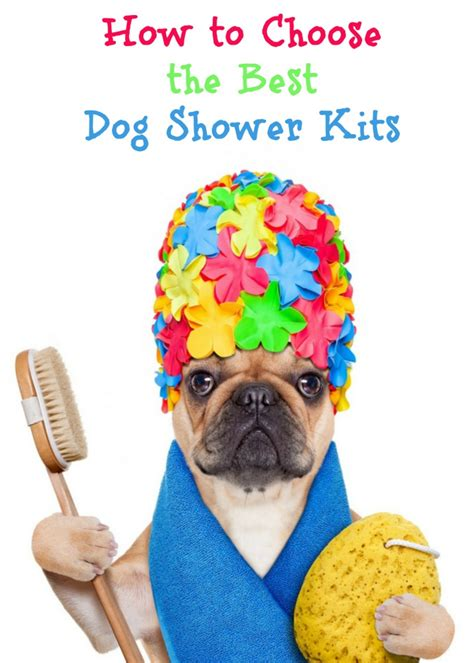 how to shower a puppy how to choose the best shower kits