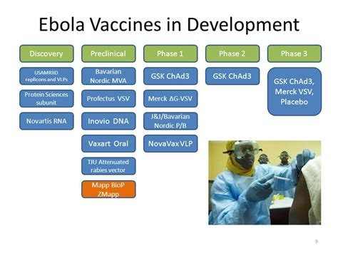 Development Of A Preventive Vaccine For Ebola Virus | development of a preventive vaccine for ebola virus