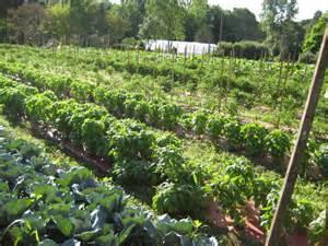 bauernhof garten shortts farm and garden center localharvest
