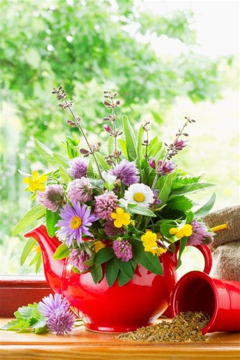Best Windowsill Flowers Teapot With Bouquet Of Healing Herbs And Flowers On