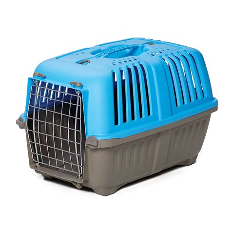 petco carriers spree plastic carrier blue petco