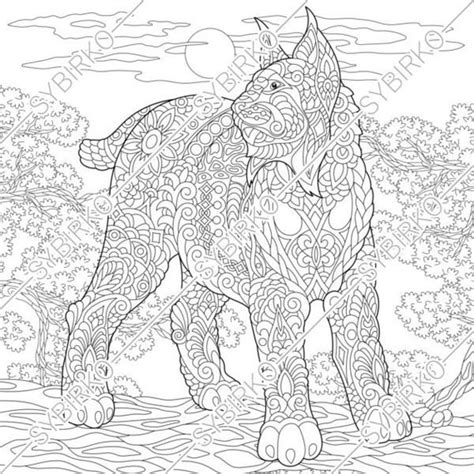 coloring pages wildcat lynx bobcat animal coloring