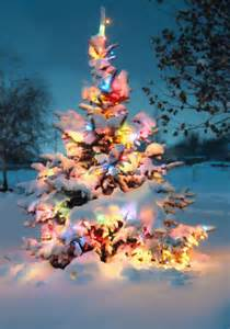 outside tree decorations ten outside tree decorations
