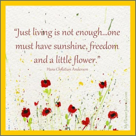 Garden Flower Quotes Quotesgram Quotes On Gardens And Flowers