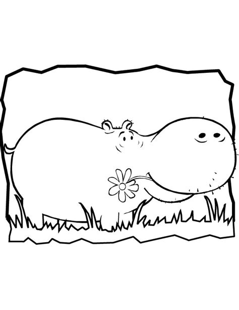 cute hippo coloring page hippo coloring pages download