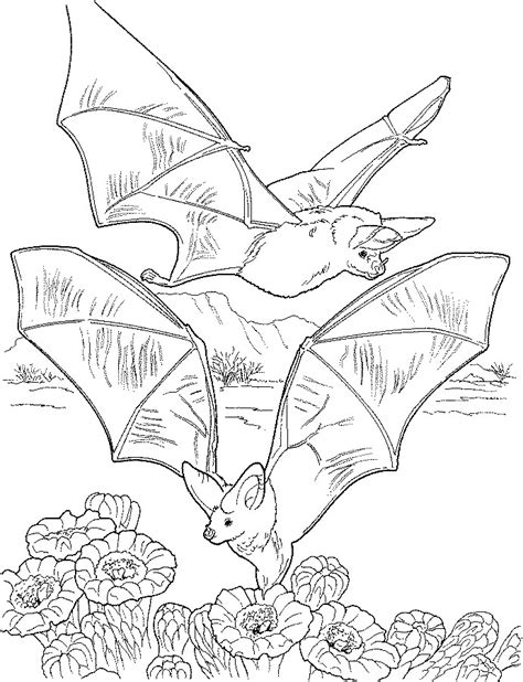 bat boat coloring page animal coloring pages children s best activities