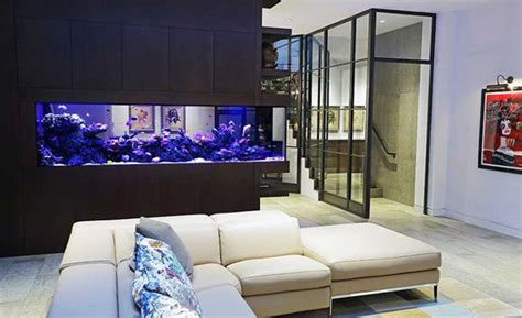aquarium room divider  living room  kitchen