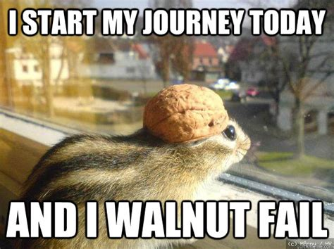 Best Memes Today - i start my journey today and i walnut fail adventure