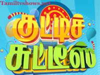 sun tv live programar tamil tv shows and serials online sun tv vijay tv raj