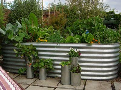 Corrugated Iron Vegetable Garden Raising Your Garden Backyard Harvest
