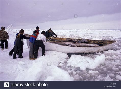 whaling longboat whaling stock photos whaling stock images alamy