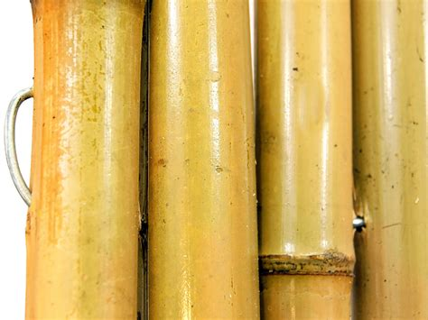 canne di bambu per arredamento canne bambu arredamento