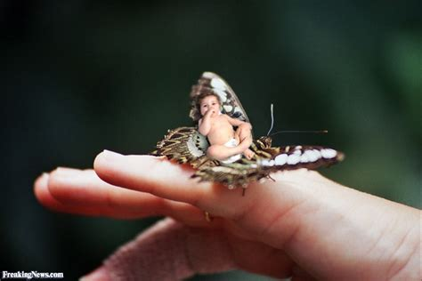smallest in the world smallest baby in the world pictures freaking news