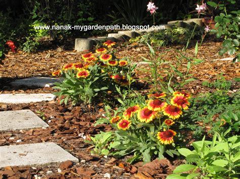 cool garden ideas for central florida photograph flowers i