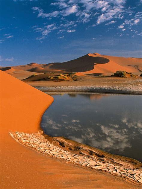 nature desert oasis  libya ipad iphone hd wallpaper
