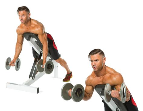 curl incline blueprint for bigger arms performance