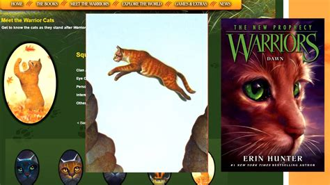 warriors colors i overanalyze one warrior cat color
