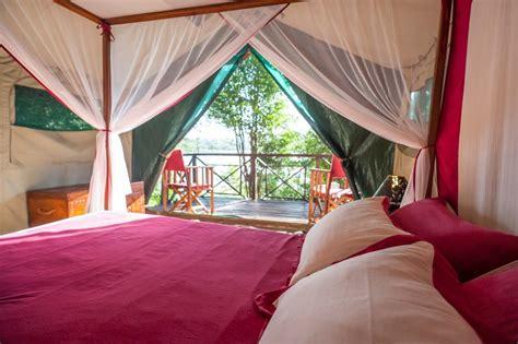 madagascar bedroom set awesome madagascar bedroom set images home design ideas