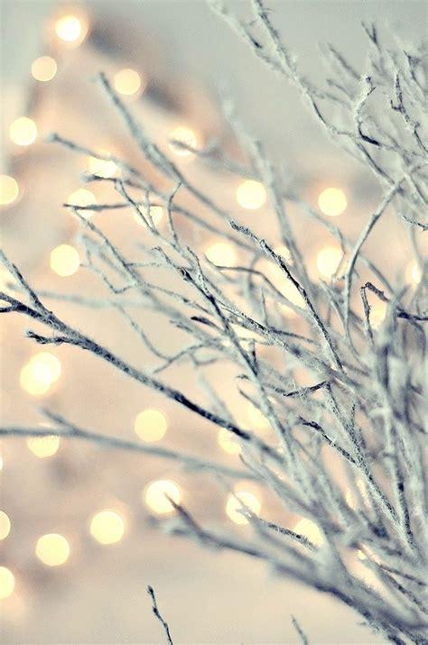 holiday white lights warmthwhite cabana white cabana