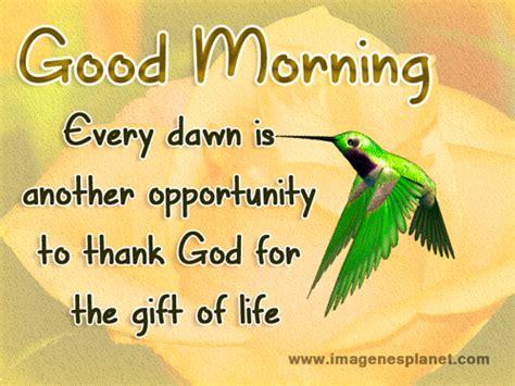 imagenes hermosas de good morning bonitas imagenes de buenos dias con frases im 225 genes de