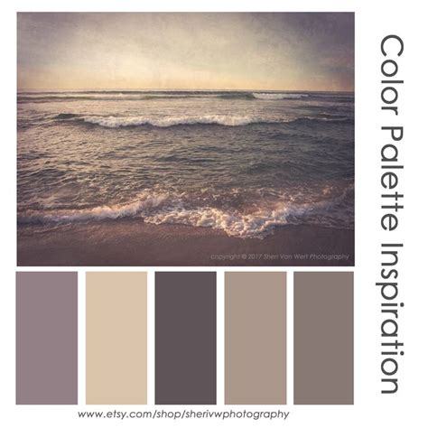 taupe colors best 25 taupe color ideas on taupe color