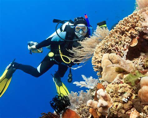 film petualangan di laut terbaik 4 spot wisata bawah laut terbaik di indonesia futuready
