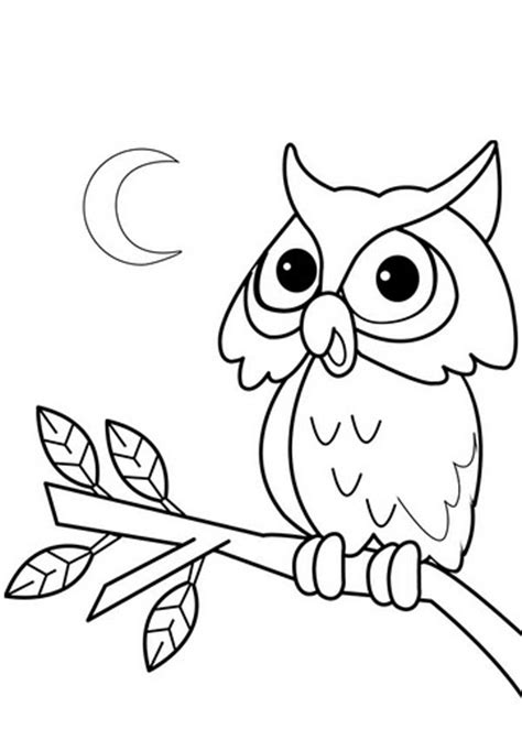imagenes para dibujar buhos buhos dibujos para pintar