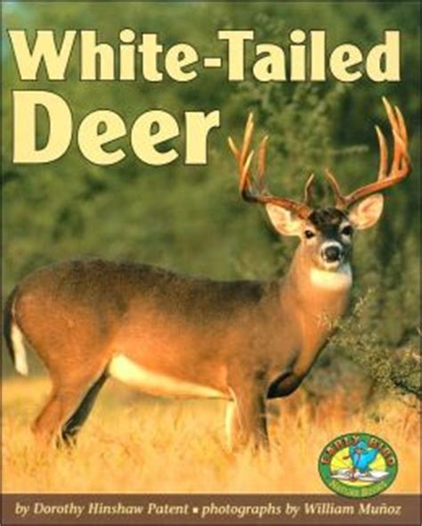 whitetail deer facts and strategies books white tailed deer early bird nature books series by
