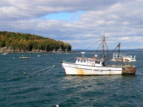 maine boats file a lobster boat at bar harbor jpg wikimedia commons