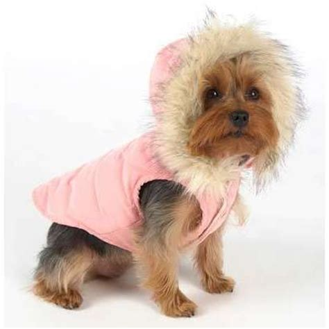winter coats for yorkies 17 best images about zero tolerance on wolves happy birthday and tvs