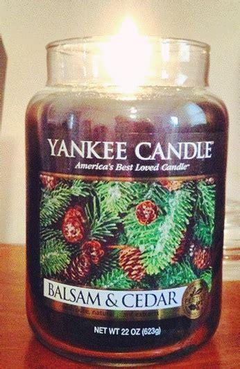 Yankee Candle Large Jar Candle Lilin Wangi Balsam Cedar yankee balsam cedar candle reviews candle frenzy