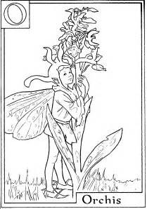 coloring pages fairies and flowers download and print letter o for orchis flower fairy