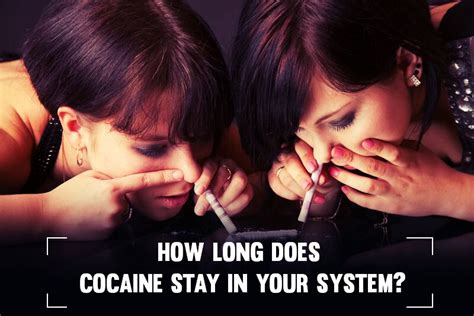 How Does Jazz Detox Stay In Your System by How Does Cocaine Stay In Your System Some Secrets