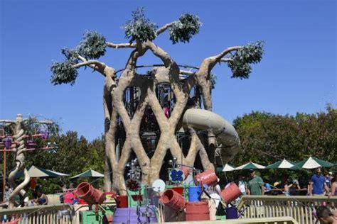 circus tree at gilroy gardens picture of gilroy gardens