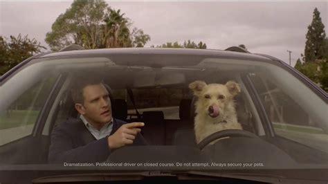 subaru tv commercial subaru tv ad with dog autos post